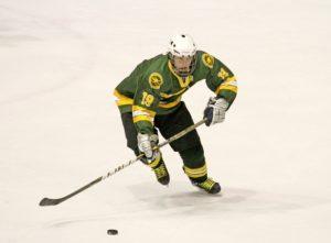 Vlastnosti, ktoré by mali mať hokejové korčule